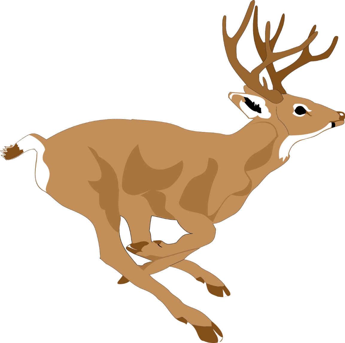 clip hunter com