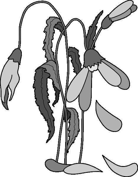 Free Dead Ants Cliparts Download Free Clip Art Free Clip