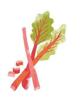 Free Rhubarb Cliparts Download Free Clip Art Free Clip