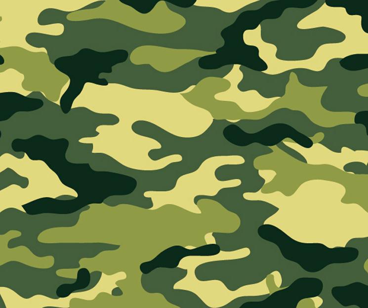 Appealing Military Color Color Putiloan