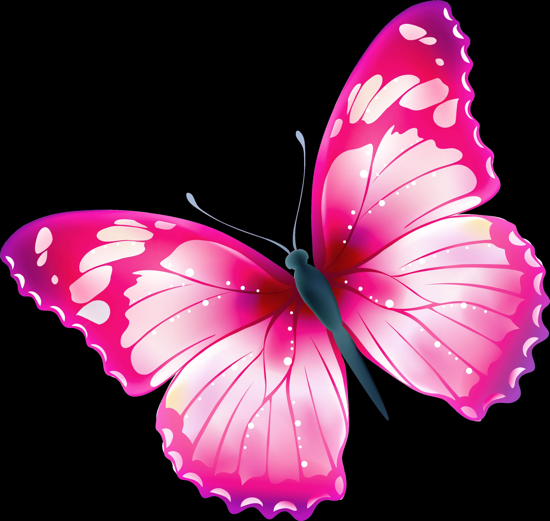 Light Blue Aesthetic Butterfly