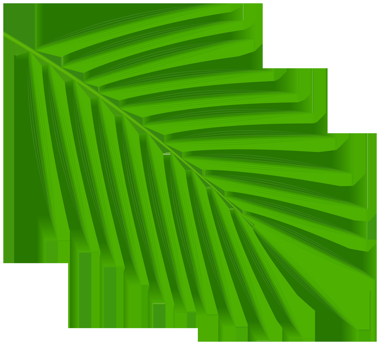 кстати пальмовый листок картинка способна удивить, только